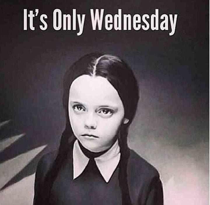Wednesday Addams Meme Funny : Wednesday addams meme bullshit pinterest