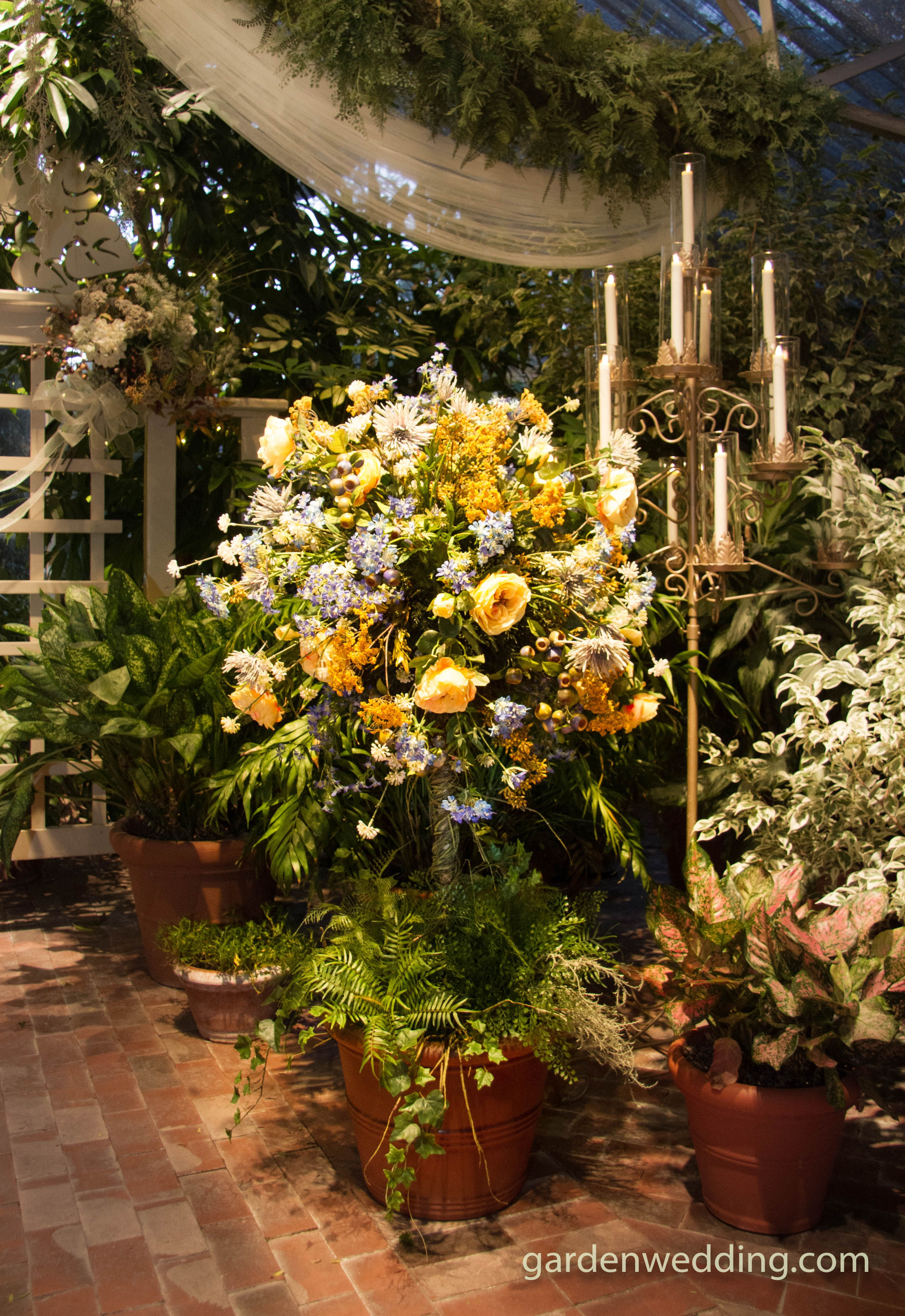 The Conservatory Is An All Glass Tropical Gardenhouse For Weddings In All Seasons Conservatory Website Garden Wedding Venue Conservatory Garden Garden Wedding