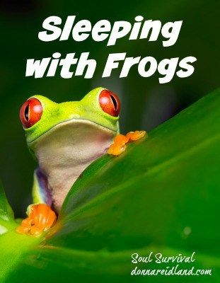 Are You Sleeping With Frogs January 29 Soul Survival Understanding The Bible Bible In A Year Christian Blogs