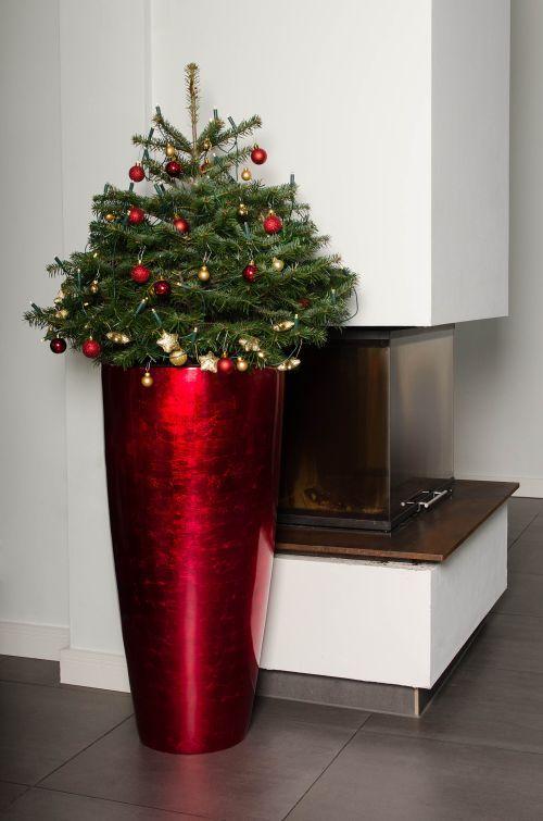 Pflanzkübel Fiberglas in Rot für Weihnachten mit ...