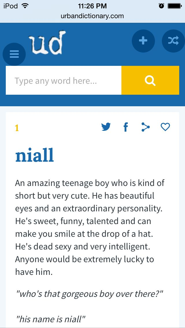 The Urban Dictionary Definition Of Niall Urban Dictionary Definitions Make You Smile Teenage Boys