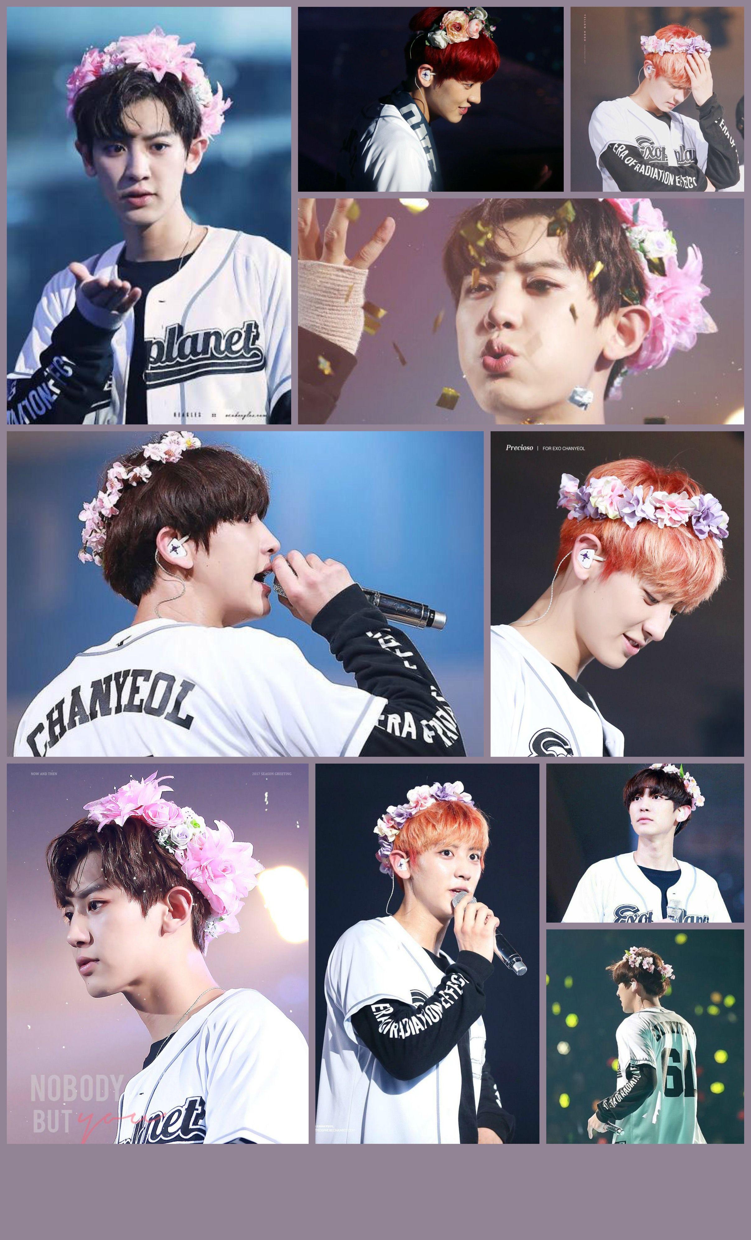 Exochanyeol Flower Crown Collages Pinterest Exo Chanyeol