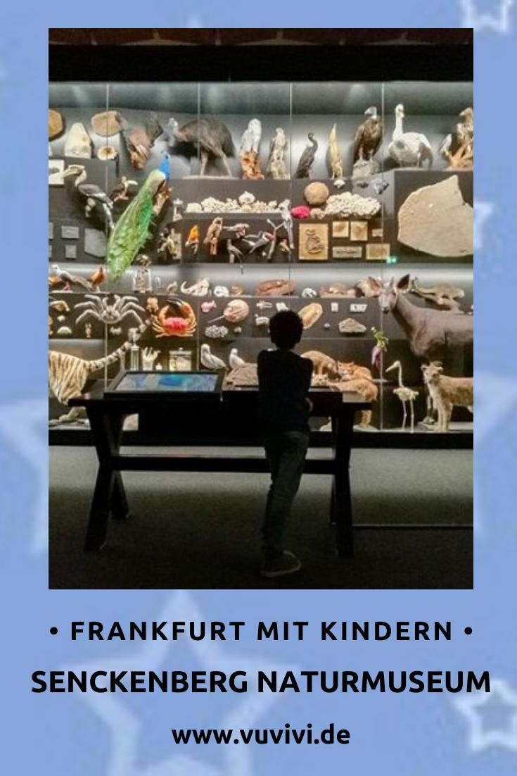 Ausflug Kinder Frankfurt