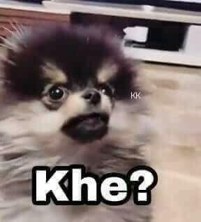 Pin De Anjella Ramos En Chinos Meme Face Memes Memes Perros Memes Divertidos