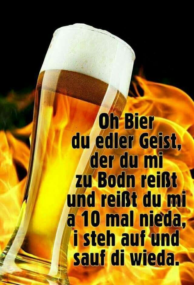 Rosinante Trinkspruche Lustig Spruche Bier Bier Lustig