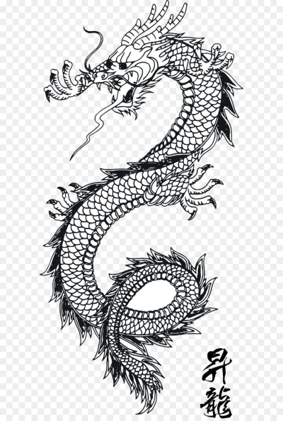 Japanese Dragon Japanese Art Chinese Dragon Black Tattoo Dragon Dragon Tattoo Stencil Dragon Tattoo Pictures Japanese Dragon Tattoo