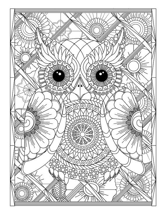Owl and Flowers Advanced Adult ColoringPage by