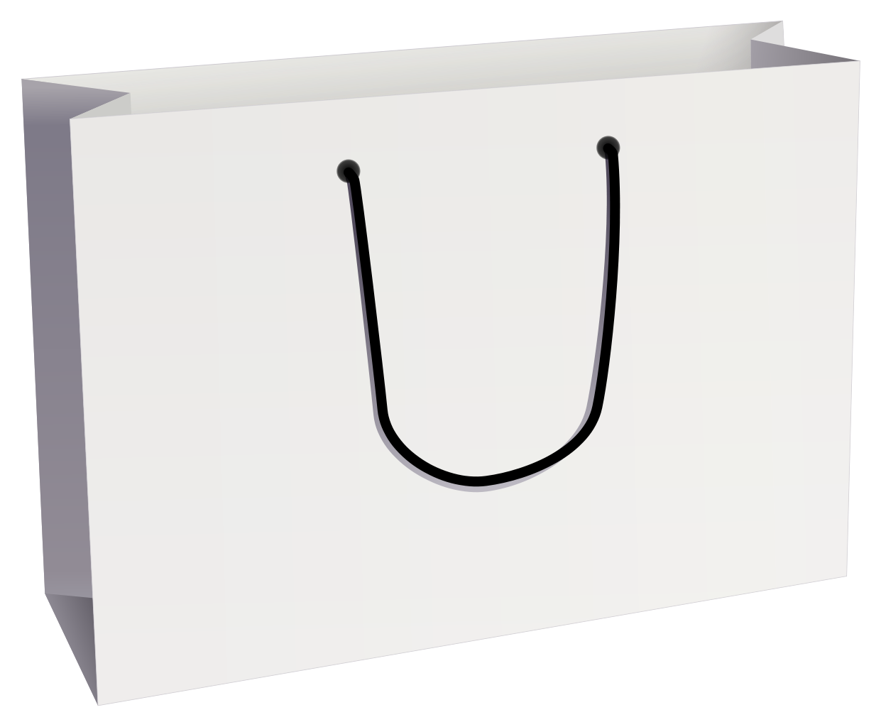 Paper Bag Large Wide 320w X 110d X 250h White Pack 100 Large Bags Paper Bag Bags