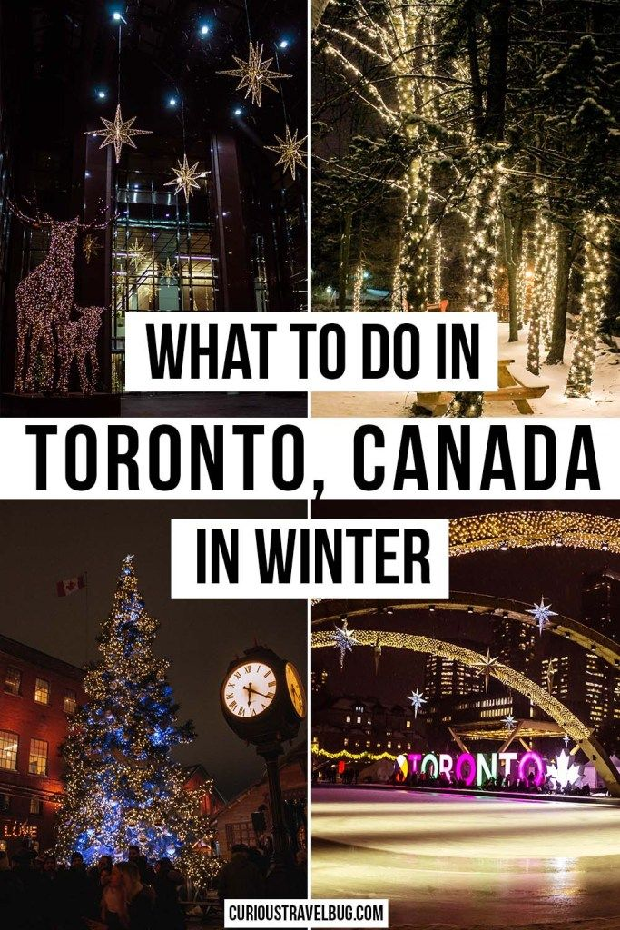 Photo of Things to do During Winter in Toronto – Curious Travel Bug