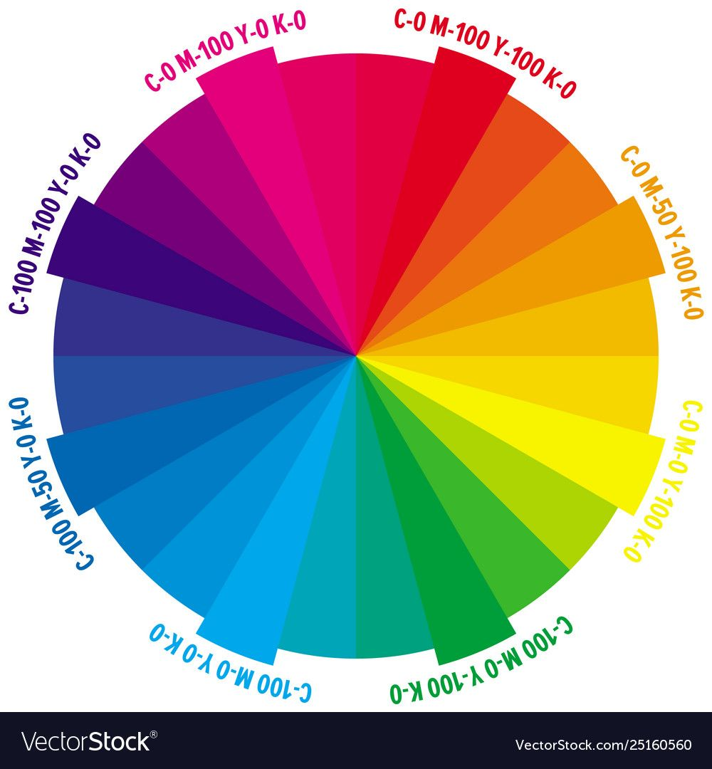 24 parts color wheel with numbers cmyk amount vector image ...