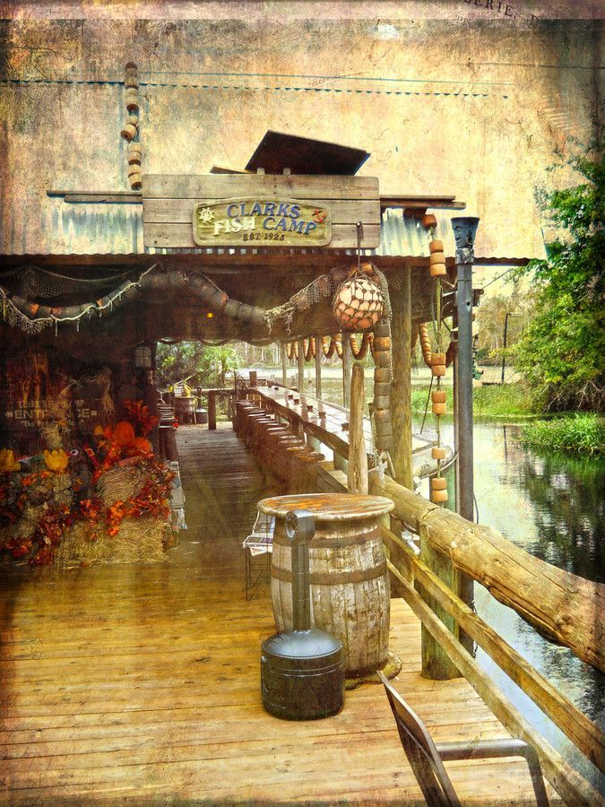 Clark's Fish Camp - Jacksonville, Florida- where I saw an alligator my first night as a new resident