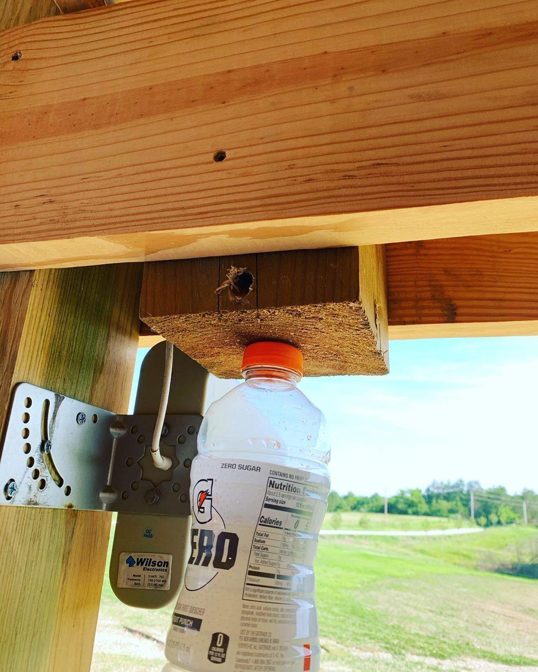 Carpenter bee trap beetrap bees outdoors homeidea diy