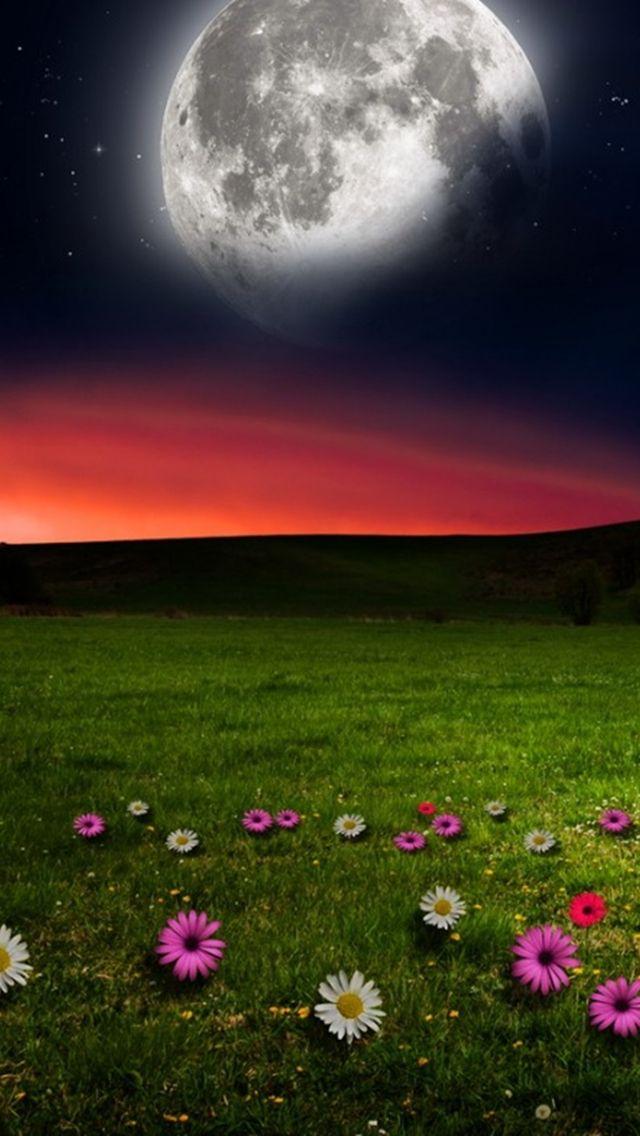 Download Romantic Landscape 640 X 1136 Wallpapers 4463962 Romantic Landscape Mobile9 Beautiful Moon Images Beautiful Moon Wallpaper Nature Flowers