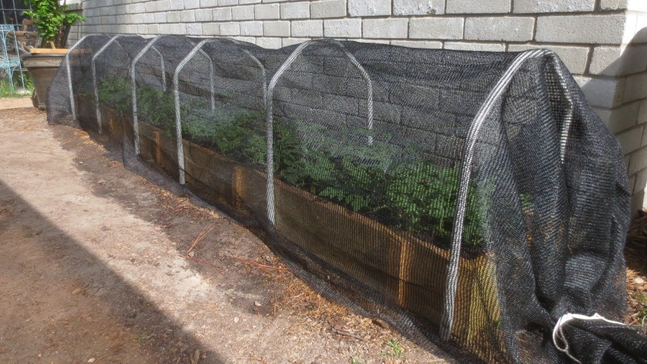 Shade Cloth: Protecting Your Plants From Extreme Summer Heat   LDSPrepper  (I Dont Like Using PVC Pipe Anywhere In A Food Garden; I Would Use  Something Else ...