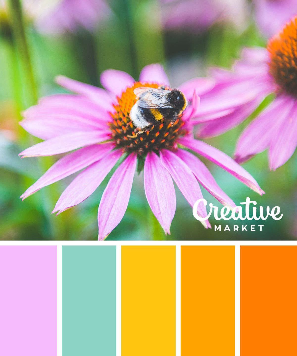 Wandfarbe Farbpalette 15 Fresh Color Palettes For Spring Creative Market Blog