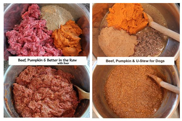 Beef pumpkin better in the raw with liver beef pumpkin u beef pumpkin better in the raw with liver beef pumpkin u stew for dogs forumfinder Gallery