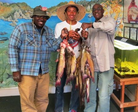 THIS 41-POUND, 4-OUNCE stringer of catfish was creeled last week at Lake Morena by Ray Holden Jr. and Sr., along with William Purefoy, all of San Diego. The fish were caught near the boulders in Cabin Cove. Western Outdoor News wonews.com