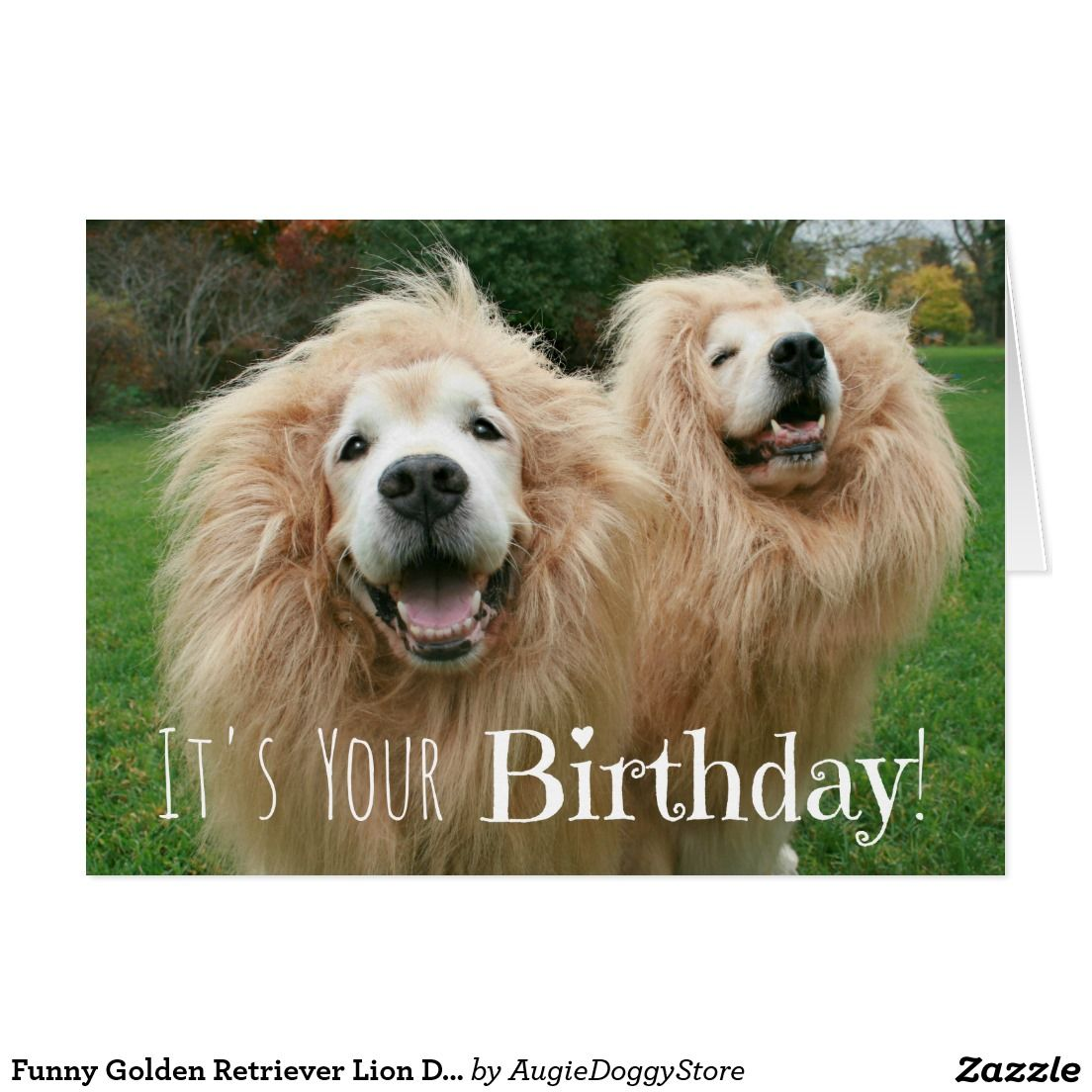 Funny Golden Retriever Lion Dogs Birthday Card Pinterest Funny