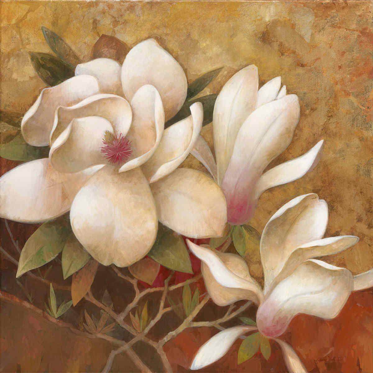 Sweet Magnolia I by Elaine Vollherbst-Lane - Art Print Framed ...