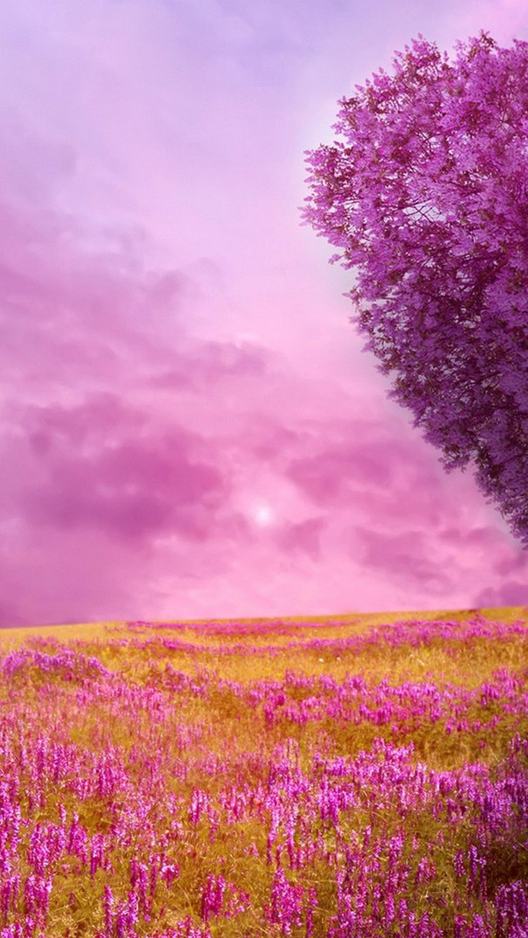 Nature Wallpaper For Android Tablet