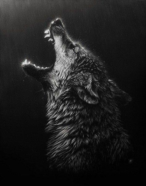 Unduh 300+ Wallpaper Black Wolf Hd HD