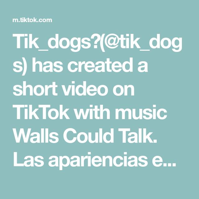 Tik Dogs Tik Dogs Has Created A Short Video On Tiktok With Music Walls Could Talk Las Apariencias Enganan Bringiton Nuestr Las Apariencias Enganan Fotos