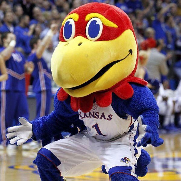 Kansas Jayhawks mascot Big Jay on court during game vs
