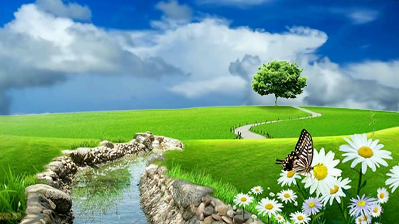 3d Nature Background Video Beautiful Flowers Scenery 815 Green Screen Backgrounds Nature Pictures Greenscreen