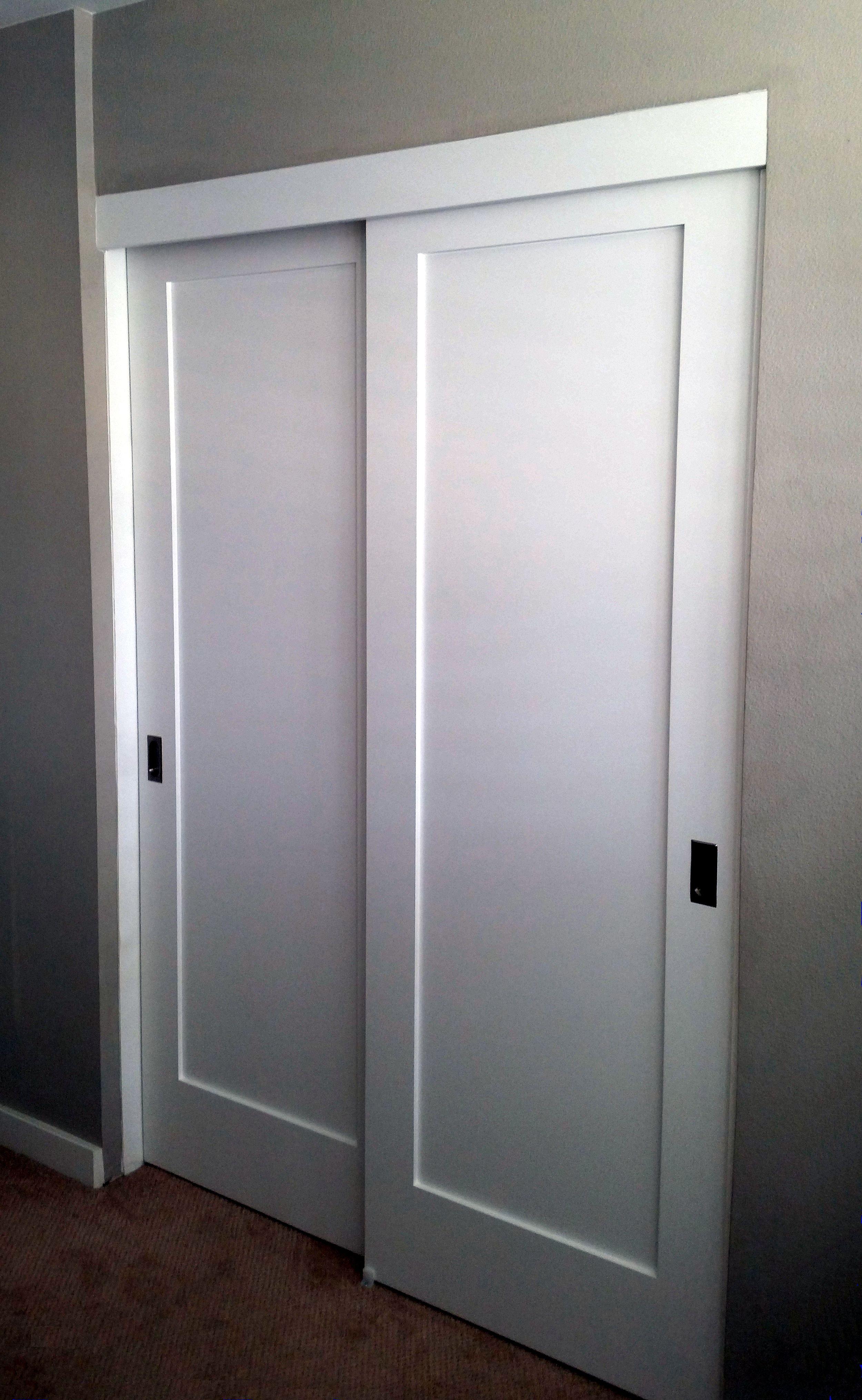Panel Louver And Flush Doors Interior Closets