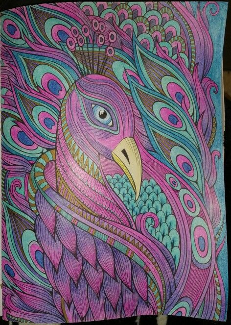 - Peacock - Today Is Going To Be A Great Day Coloring Book Bird Pictures, Coloring  Books, Color Inspiration