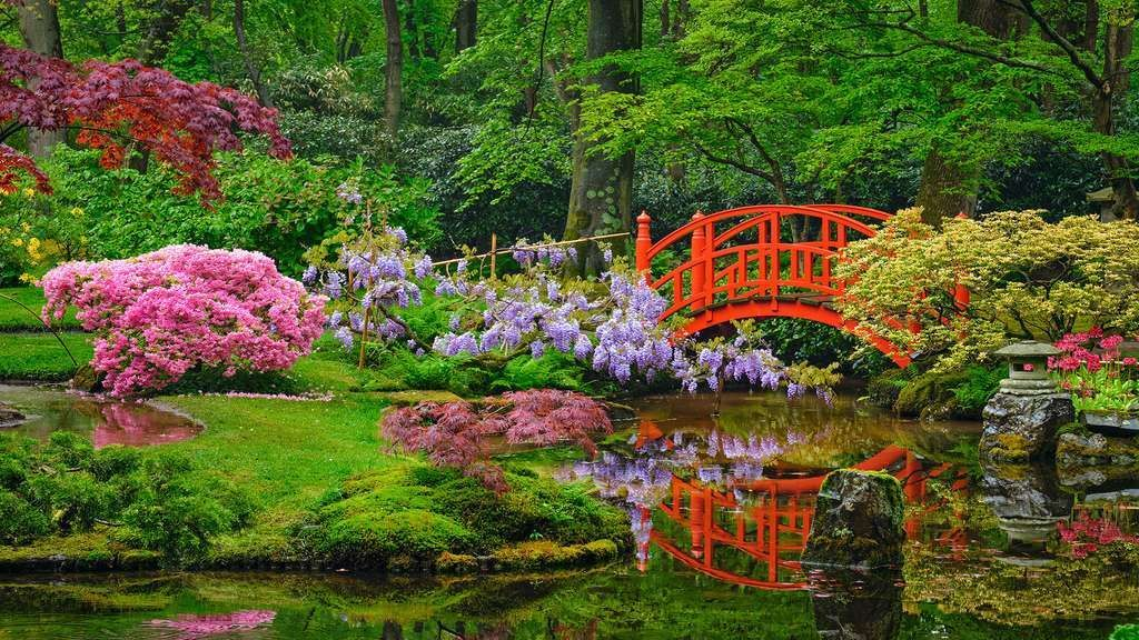 Le jardin japonais de Lady Daisy, en Hollande,Ce jardin