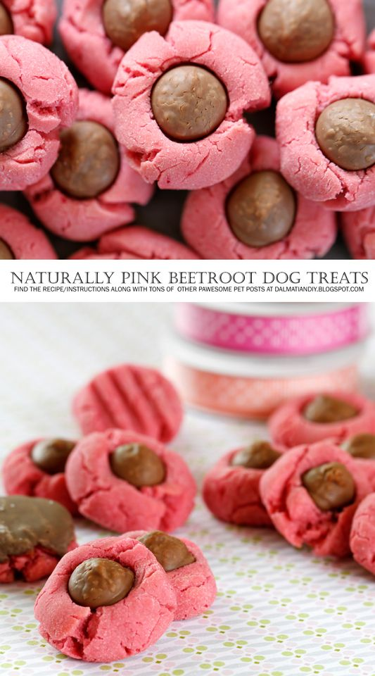 Pink Valentine S Day Beet Dog Treats Four Ways Pet Celebrations