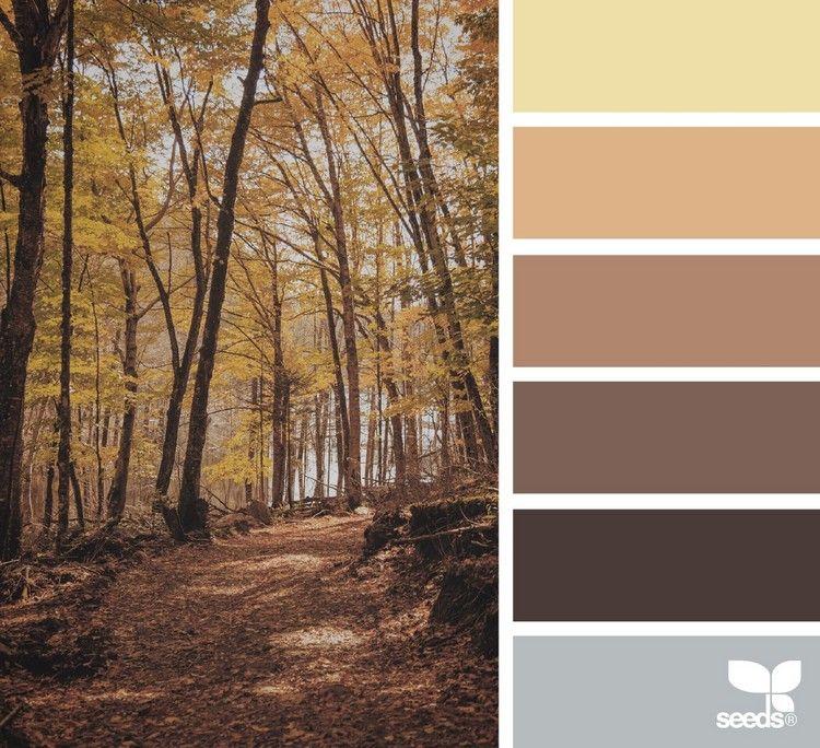 Welche Farbe Passt Zu Braun Passende Farbkombinationen In