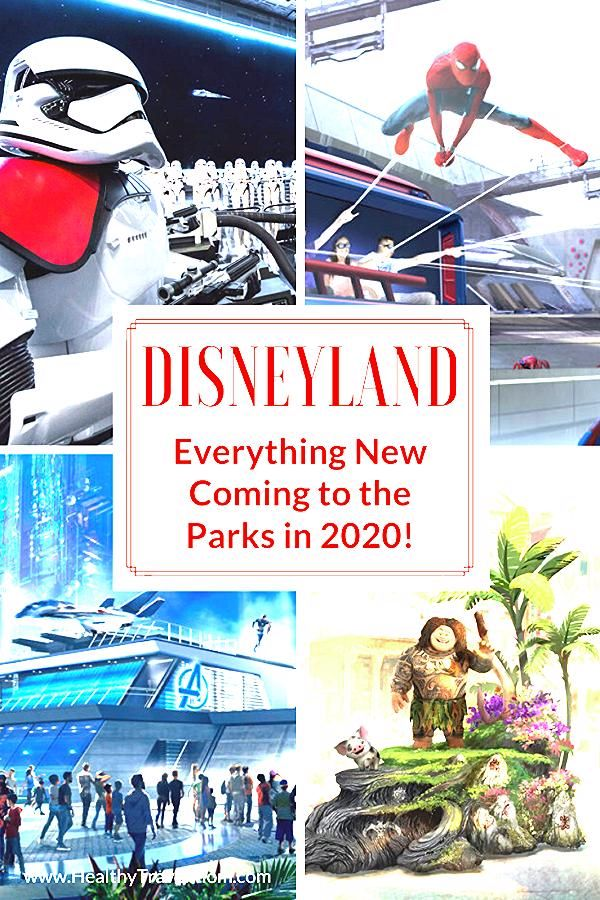 Photo of New at Disneyland in 2020 – Healthy Travel Mom