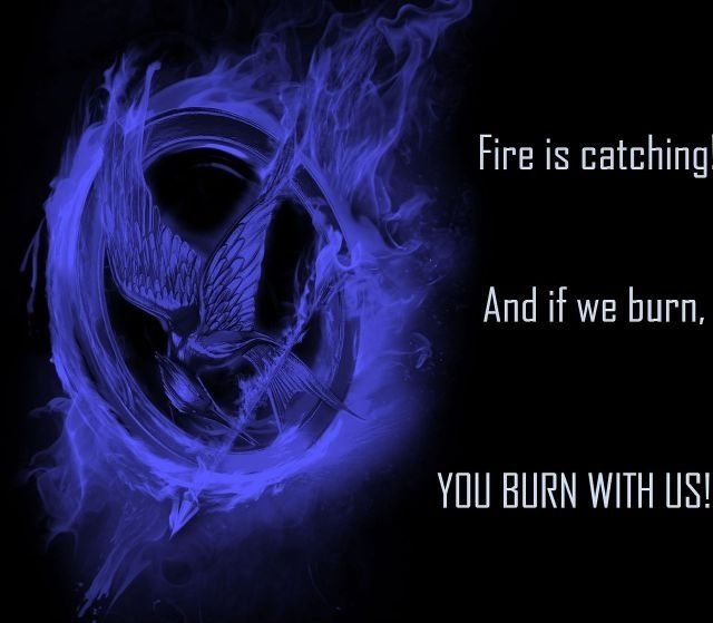 Hunger Games Quote / Mocking Jay / Katniss