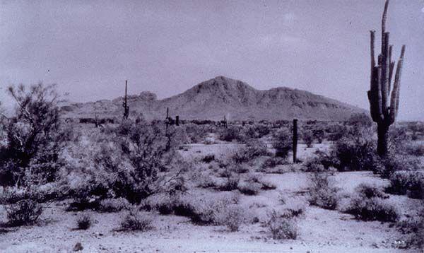 Strange But True: The Arizona Photographs of Allen Dutton