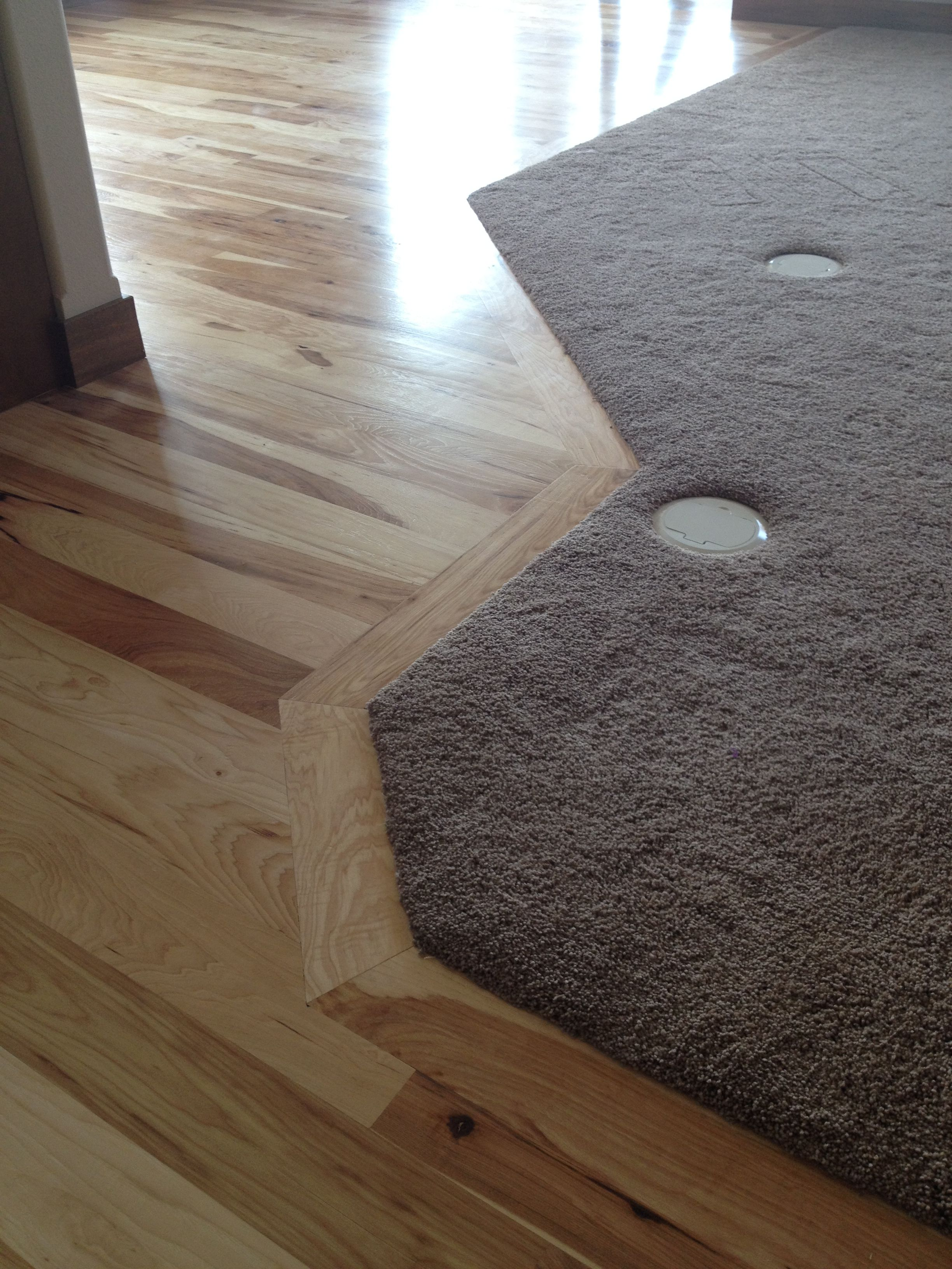 Living room carpet transition to hardwood in kitchen and
