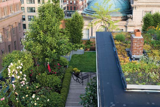 Superbe Rooftop Garden Nyc Living Roofs On Private Homes: A Practical Guide