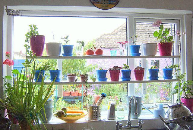 Ikea Hack Varde Shelving For Kitchen Windowsill Kitchen Window Sill Plant Shelves Window Sill
