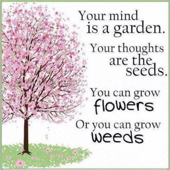 Gentil I Love This Quote. So True   Is Your Garden Half Full Or Half Empty