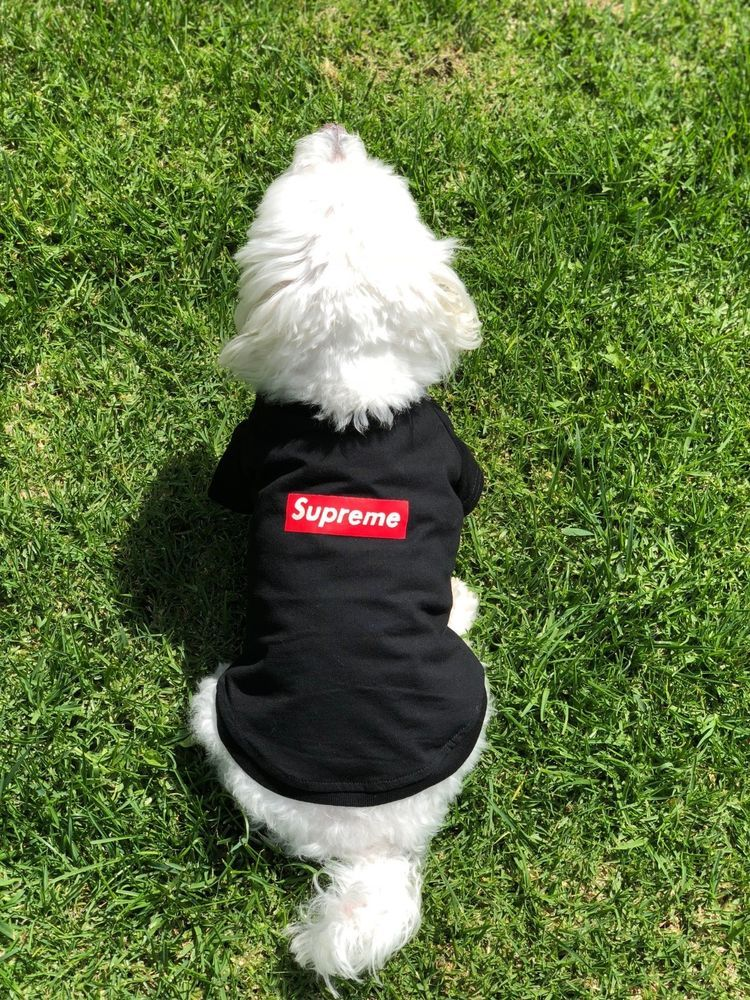 63fa43d408 Supreme Hypebeast Dog Puppy T Shirt Sweater Coat Jacket Clothes