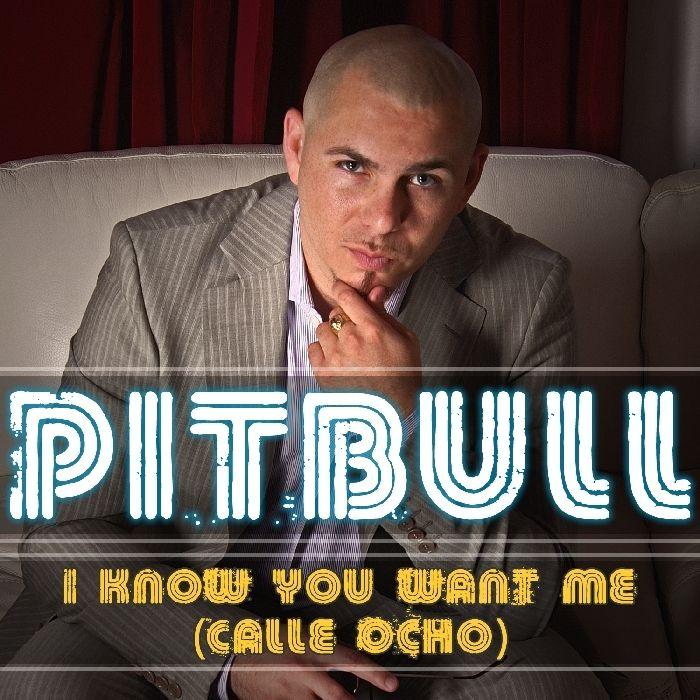 Pitbull – I Know You Want Me (Calle Ocho) (single cover art)