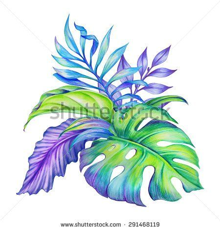 watercolor exotic jungle leaves arrangement, artistic ...