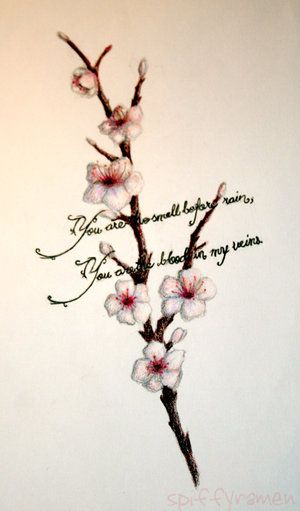 Cherry Blossom Tattoo Designs With Meaning Apple Blossom Tattoos
