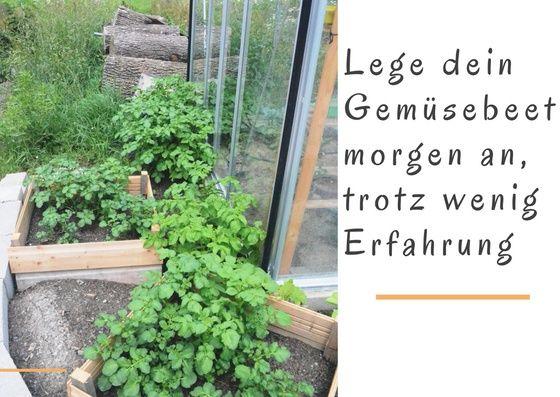 Lege dein Gemüsebeet an, trotz wenig Erfahrung