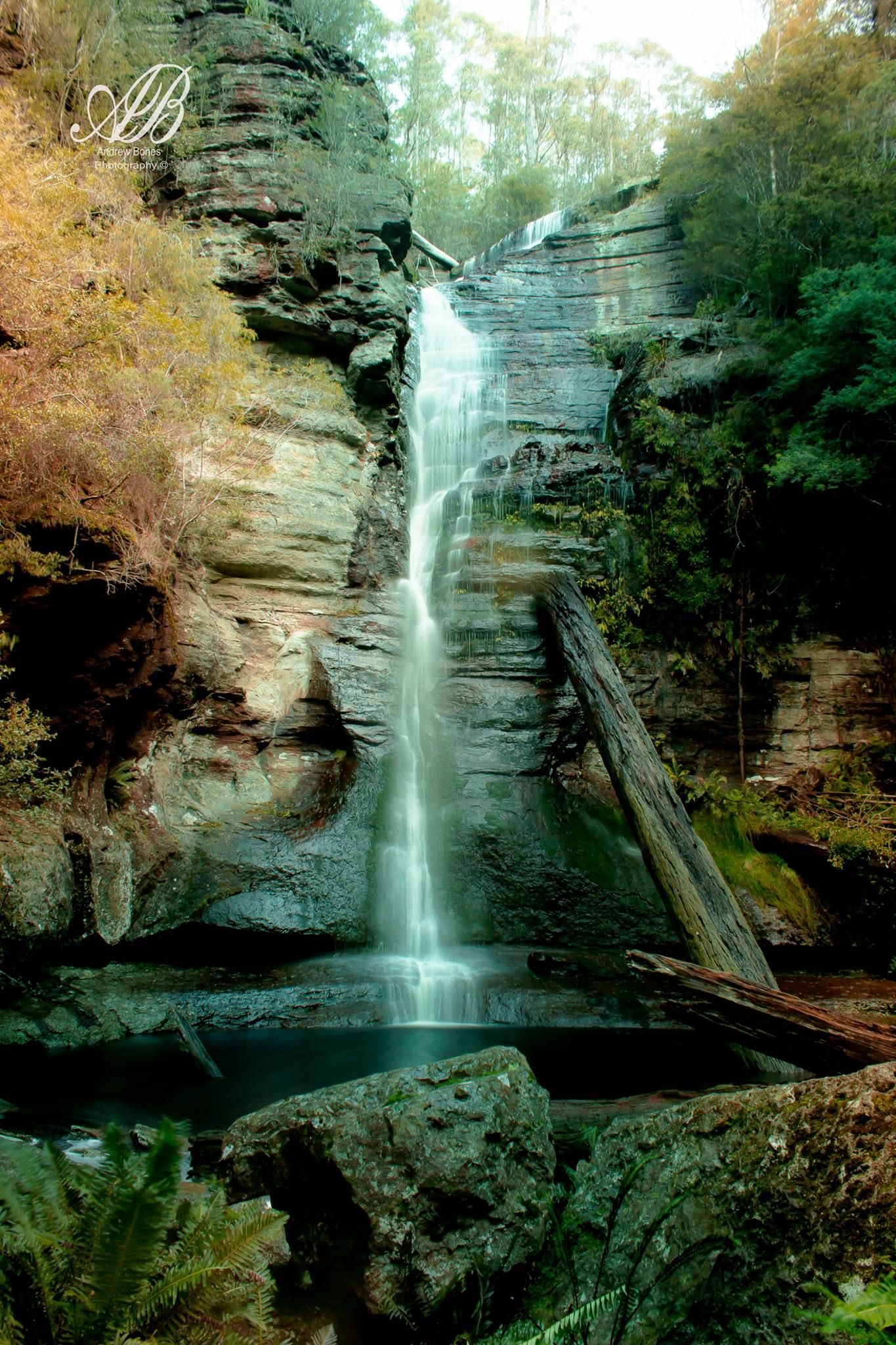 Snug Tier Falls - photo by Andrew Bones