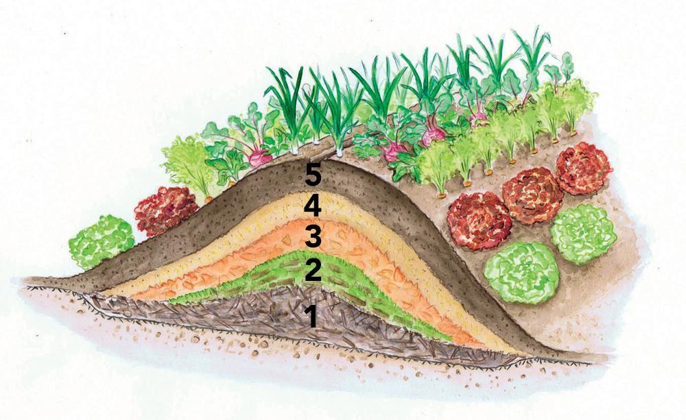Ein Hügelbeet besteht aus mehreren Schichten organischen Materials. Gemüse lässt sich hier gut kultivieren, da bei der Zersetzung Wärme frei wird, die das Pflanzenwachstum fördert. So können Sie sich ein eigenes Hügelbeet anlegen #vertikalergemüsegarten