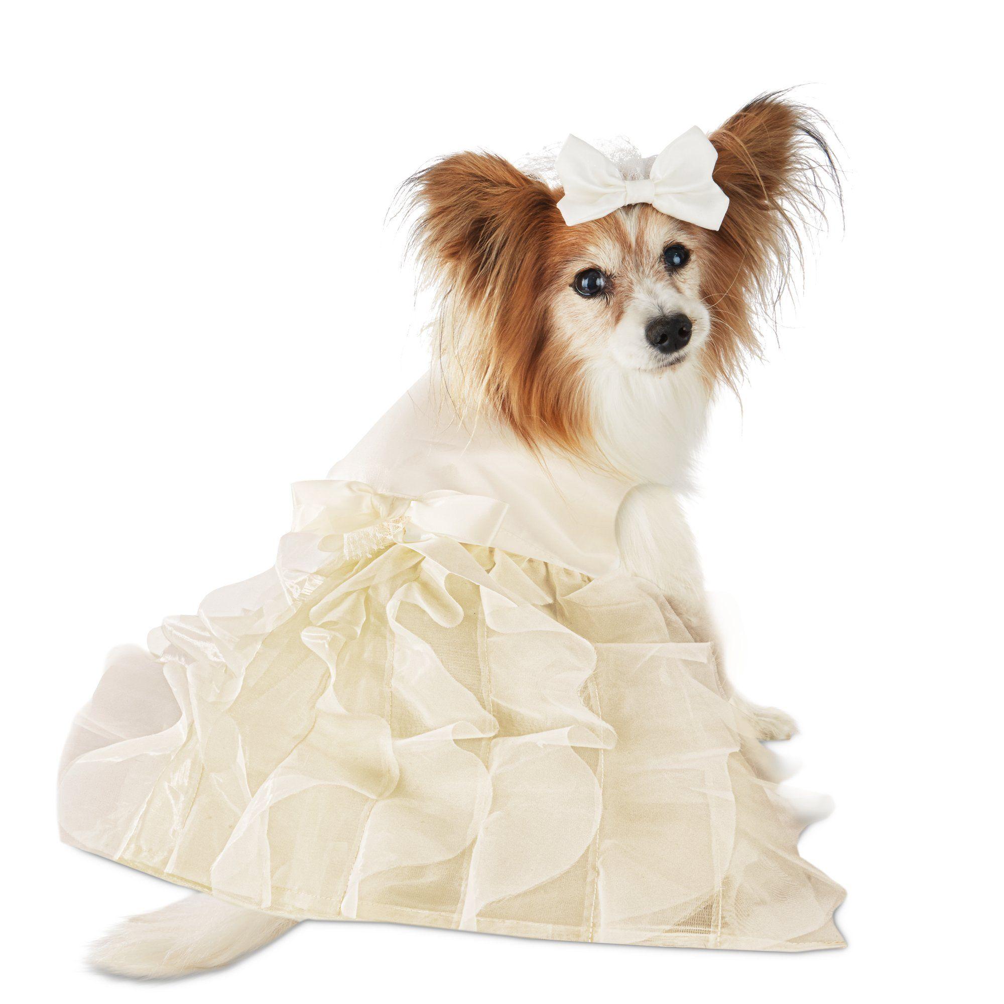 The You Me Wedding Dress Veil Set For Dogs Small Wedding Dress With Veil Dog Wedding Dog Wedding Dress