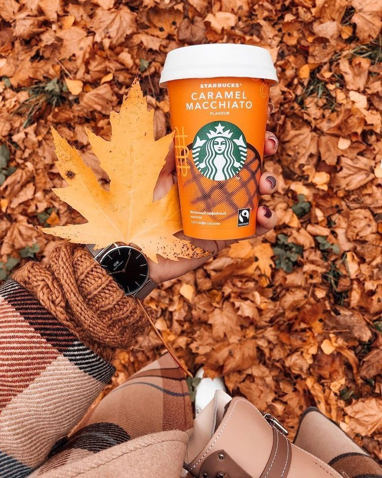16 Fall Favorites | A Coffee Drink Exclusive - Cof