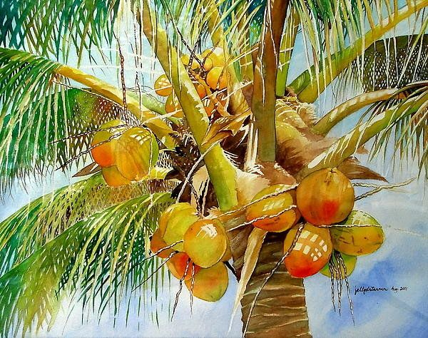 Coconut Tree Art Print By Jelly Starnes In 2020 Watercolor Trees